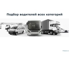Подбор водителей категорий В, С, D или Е
